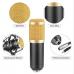 ZaxSound B800 Condenser Microphone Kit